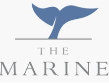 Whale Talk Magazine - The Marine Hotel